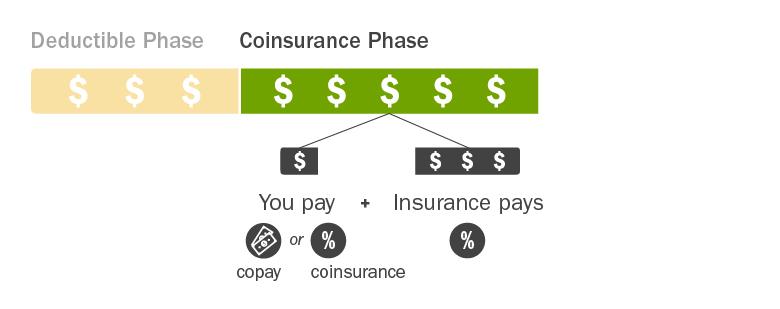C4HC_Insurance-Costs-Explained_Phase2